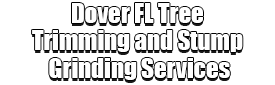 Dover FL Tree Trimming and Stump Grinding Services Logo-We Offer Tree Trimming Services, Tree Removal, Tree Pruning, Tree Cutting, Residential and Commercial Tree Trimming Services, Storm Damage, Emergency Tree Removal, Land Clearing, Tree Companies, Tree Care Service, Stump Grinding, and we're the Best Tree Trimming Company Near You Guaranteed!